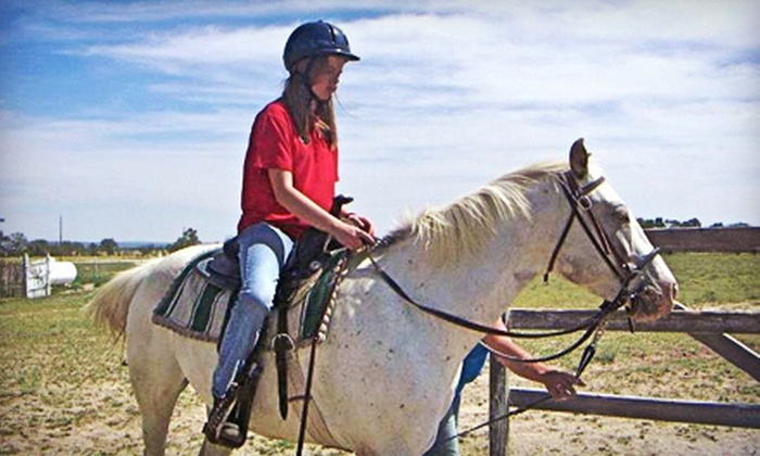 Prairie Winds Horsemanship - Black Forest-Peyton: $35 for Two One-Hour Private Horseback-Riding Lessons at Prairie Winds Horsemanship ($70 Value)