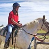 50% Off Lessons at Prairie Winds Horsemanship