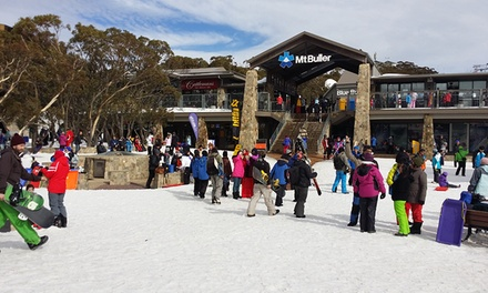 Snowy Mountains, Mt Buller: Day Tour with Return Melbourne CBD Transfers for One with Around and About Travel