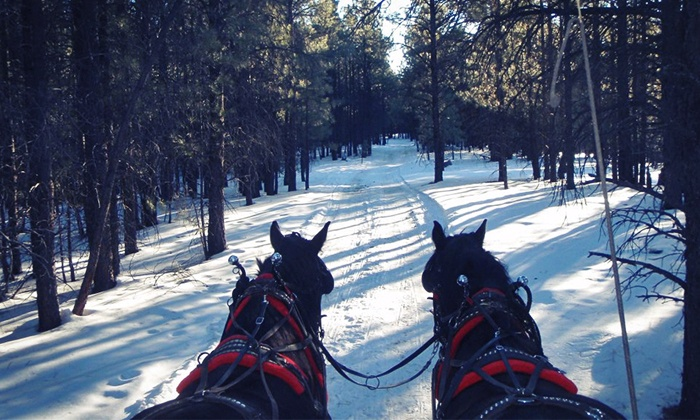 Hitchin' Post Stables - Hitchin' Post Stables: Scenic Sleigh Ride with Hot Cocoa and Bonfire for Two or Four from Hitchin' Post Stables (Up to 50% Off)