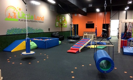 One or Two Months of Open Play at Little Land Play Gym (Up to 41% Off)