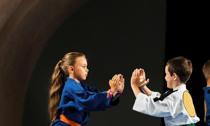 Power Of Leverage Brazilian Jiu Jitsu - Fountain Valley: $35 for $99 Groupon — Power of Leverage BJJ