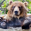 BC Wildlife Park—Up to 35% Off Admission
