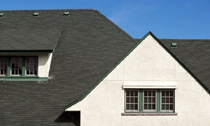 Freeman & Young Construction, Inc.: $65 for Home Roof Inspection and Tune-Up from Freeman & Young Construction, Inc. ($275 Value)