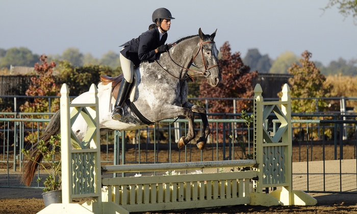 Jeanette Arnaout Training - Lightning Stables: Four-Day Half- or Full-Day Kids' Horseback-Riding Summer Camp at Jeanette Arnaout Training (54% Off)