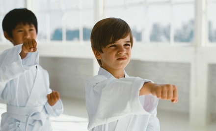 One- or Two-Month Membership with Uniform Included at Karate America (Up to 76% Off)
