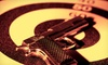 LPI Firearms - Greater Thonotosassa: One or Two One-Hour Learn to Shoot Classes at LPI Firearms (Up to 63% Off)