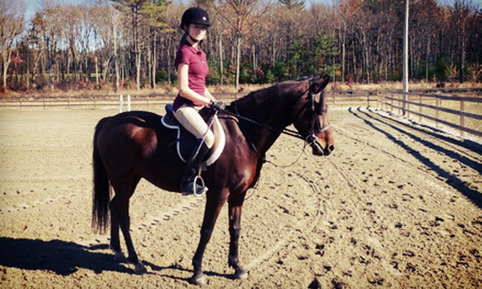 Hillside Meadows - Grafton: Two or Four 30-Minute Private Horseback-Riding Lessons at Hillside Meadows (Up to 64% Off)