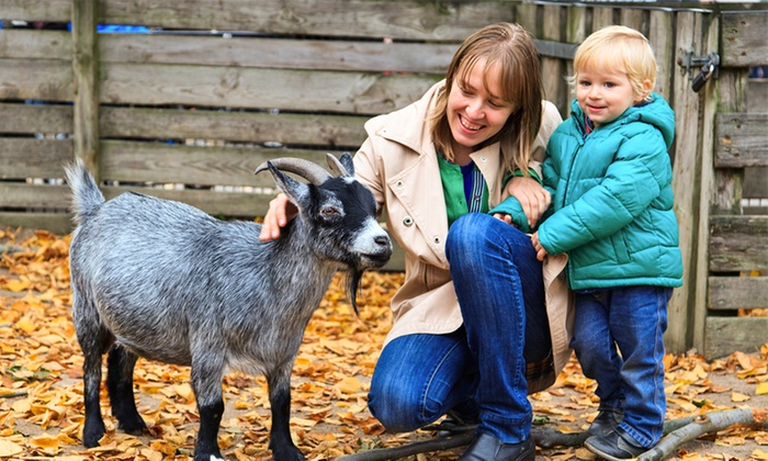 Down at the Farm - Down at the Farm: Season Pass For Two or Four from £15 at Down at the Farm (Up to 67% Off)