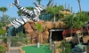 Up to 31% Off Rounds of Golf at Congo River Golf
