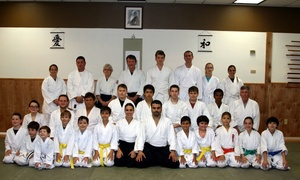 Aikido Of Seminole County - Sadkane School: $30 for $85 Worth of Martial-Arts Lessons — Aikido of Seminole County - Sadkane School