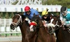 Turf Paradise — Up to 51% Off Horse-Racing Package