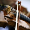 53% Off Private Violin or Viola Lessons