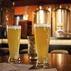 Up to 53% Off Craft-Beer Tasting and Tour with Appetizers