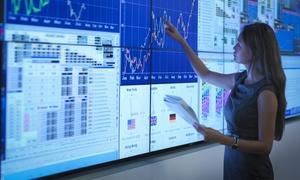 El Inversor Realista: Curso online de Inversión en Bolsa a elegir entre básico y avanzado desde 9,90 € con El Inversor Realista