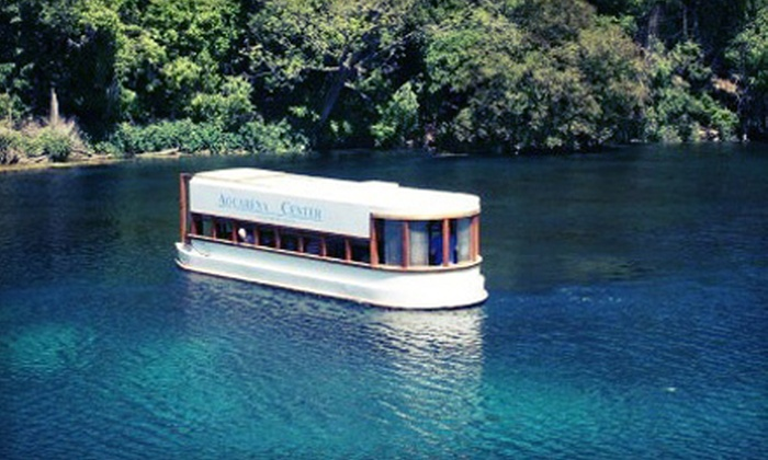The Meadows Center - Texas State University: Glass-Bottomed-Boat Tour for Two, Four, or Six at The Meadows Center (Up to Half Off)