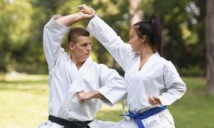 Taiho Jutsu: 1 ou 3 mois de cours de Thaiho Justu pour 1 ou 2 personnes à partir de 9,99€