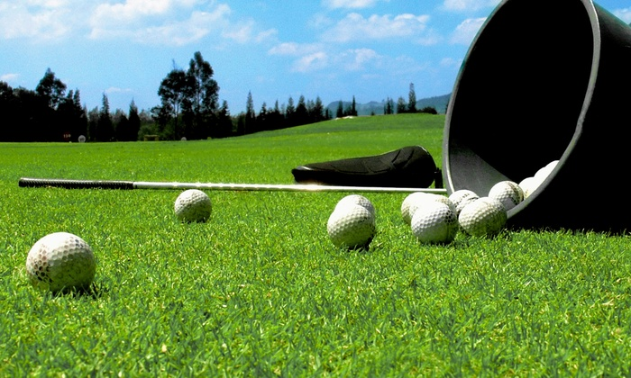 Edwin Shaw Challenge Golf Course - Lakemore: $10 for Two Jumbo Buckets of Driving-Range Balls at Edwin Shaw Challenge Golf Course ($17 Value)