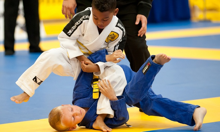 Southeast Florida's Elite Mma - West Palm Beach: $75 for $250 Worth of Martial-Arts Lessons — Alequin Mixed Martial Arts
