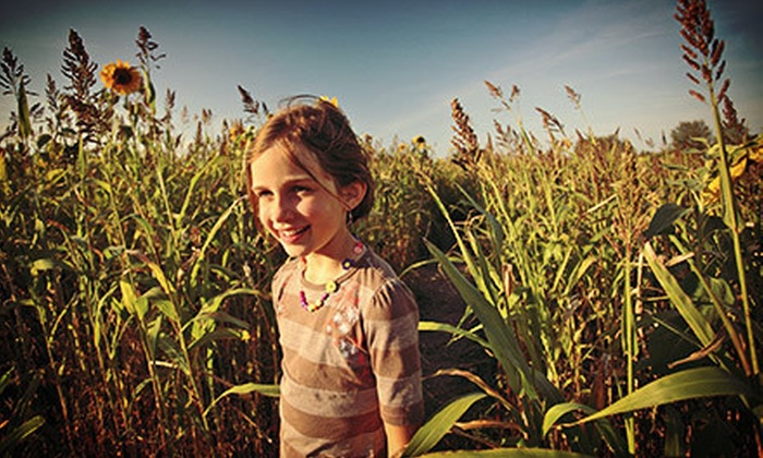 Genesee Country Village & Museum - Wheatland: Corn Maze for Two, Four, Six, or Eight at Genesee Country Village & Museum (Up to Half Off)