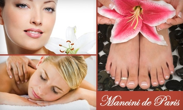 Mancini de Paris Salon & Day Spa - Arlington Heights: Spa and Salon Services at Mancini de Paris Salon & Day Spa. Choose from Three Options.
