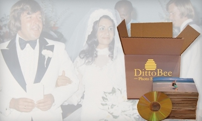 DittoBee Photo Scanning: Digitization of Up to 500, Up to 1,000, or Up to 2,000 Photos on DVD or CD from DittoBee Photo Scanning (Up to 68% Off)