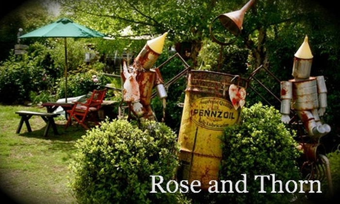 Rose and Thorn - Napa / Sonoma: $10 for $20 Worth of Gifts, Jewelry, and More at Rose and Thorn