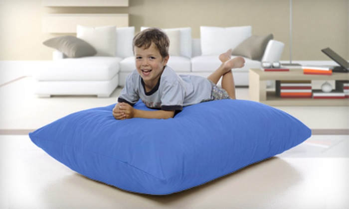 Up To 62% Off A Xorbee Foam Pillow Chair