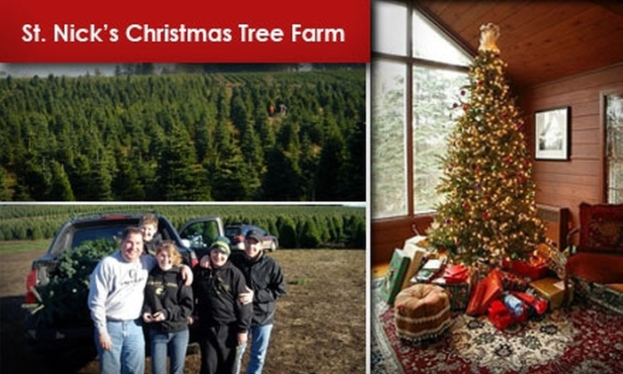 St. Nick's Christmas Tree Farm - Redland: $25 for $45 Toward a Noble Fir Christmas Tree 6 Feet and Up at St. Nick's Christmas Tree Farm