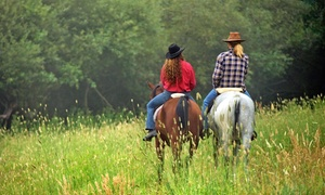 Spirit Fire Ranch: Two or Four One-Hour Horseback-Riding Lessons at Spirit Fire Ranch (57% Off)