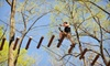 The Adventure Park at Storrs - Mansfield: Ziplining for One, Two, or Four at The Adventure Park at Storrs (Up to 38% Off)