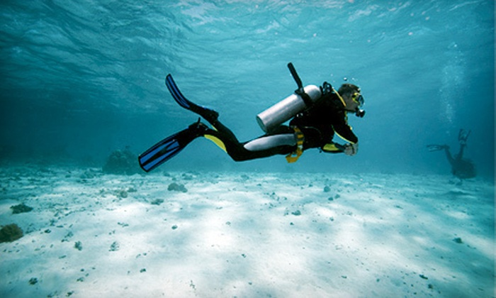 Northeast Scuba - Chelmsford: Full Diving Certification, Open-Water Referral, or SSI Recreational Diving Courses at Northeast Scuba in Chelmsford (Up to 54% Off)