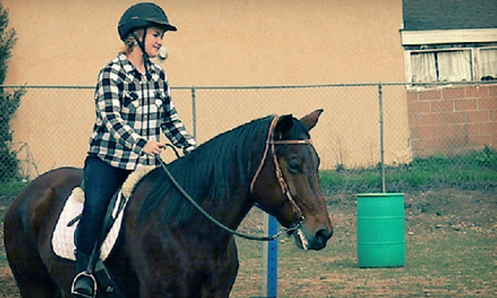 Anna Baker Horsemanship - Lemon Grove: $35 for Two 30-Minute Private Horseback-Riding Lessons at Anna Baker Horsemanship in Lemon Grove ($70 Value)