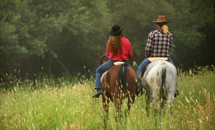 1-Hour Horseback Ride & Dinner Package for 2 ($120 total value) - Calico Junction Mule Ranch in Hohenwald