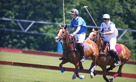 The Polo Organization - The Polo Organization in Essa