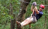 Half Off ZipQuest Zipline Canopy Tours