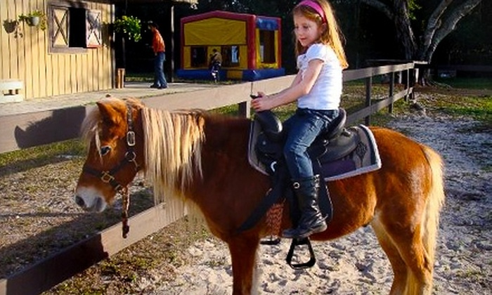 The Davie Ranch - Davie: $30 for Private, One-Hour Horseback-Riding Lesson or $245 for Basic Children's Party Package at The Davie Ranch