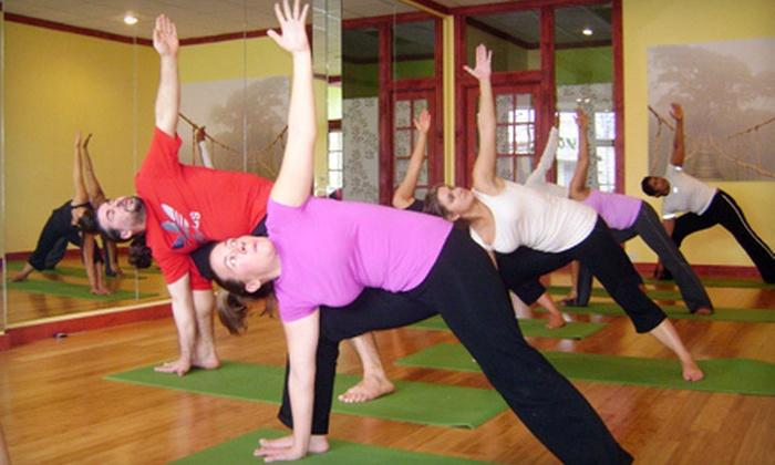 Ananda Yoga Sangam - Douglaston Little Neck: 6, 12, or 18 Yoga Classes at Ananda Yoga Sangam in Douglaston (Up to 84% Off)