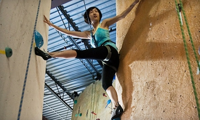 Toronto Climbing Academy - Parkview Hills: $45 for a Beginners' Course and One-Month Pass with Equipment Rentals to Toronto Climbing Academy (Up to $146 Value)
