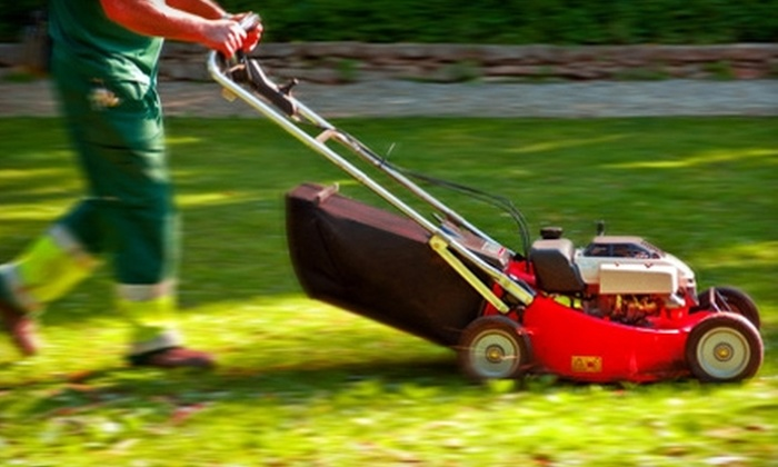 Redbeacon: $25 for a $50 Credit Toward Cleaning, Yard Work, or Other Services from Redbeacon