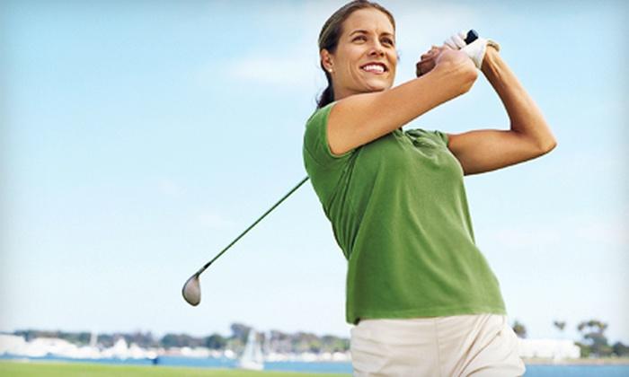 The Falls Golf Club - O'Fallon: Private One-Hour Lesson or Ladies' Six-Week Beginner Golf Clinic at The Falls Golf Club in O'Fallon (Half Off)