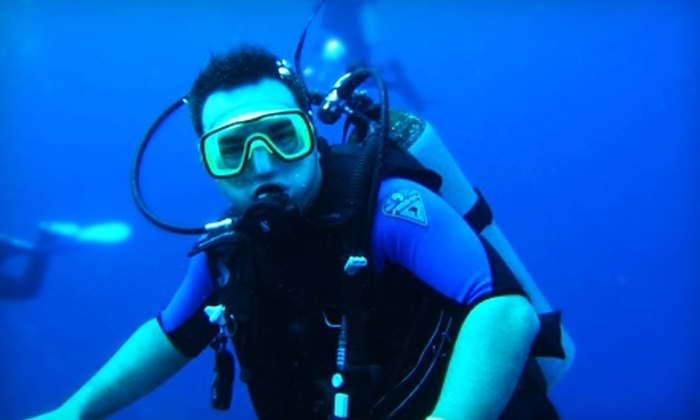Seaduction Dive Center - Dunn: $25 for Two-Hour Discover Scuba Class at Seaduction Dive Center ($50 Value)