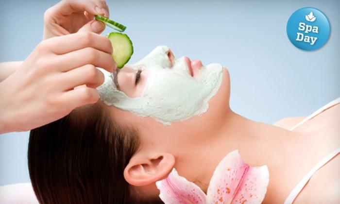 Skin Wellness - Cherry - Guardino: One or Three One-Hour Organic Facials with Mini Massage at Skin Wellness in Fremont