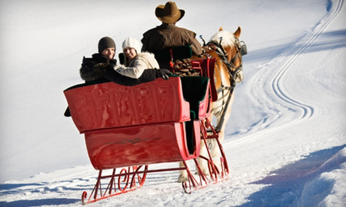 Double Tree Farms - Saskatoon: $175 for a One-Hour Valentine's Day Sleigh Ride from Double Tree Farms ($350 Value)