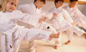 The Oriental Martial Arts College: $18 for 12 Martial Arts & Kimoodo Healing Arts Classes with Uniform ($350 Value)