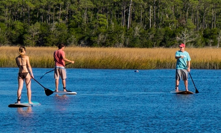 Daytime or Nighttime Stand-Up Paddleboard Tour for Two or Four at Barrier Island Excursions (Up to 53%Off)