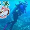 57% Off Scuba Diving at Red River Scuba