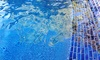 Elite Pool Service - Tulsa: One Month of Pool-Maintenance Services or Spring Pool-Opening Package from Elite Pool Service (Up to 76% Off)