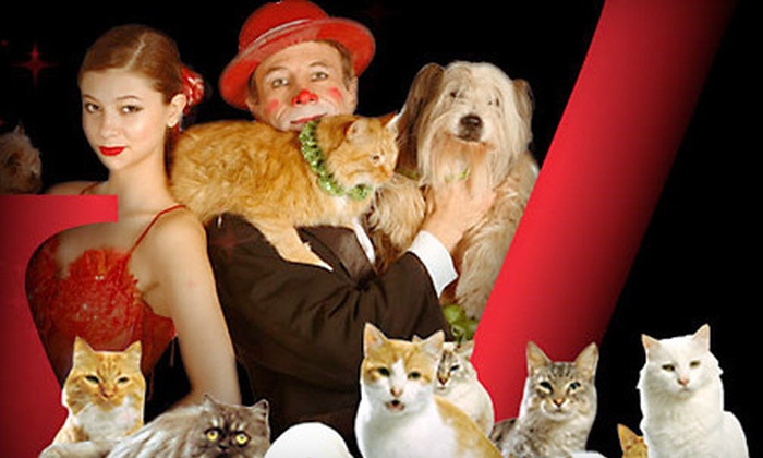 The World Famous Popovich Comedy Pet Theater - The Strip: One Children's or Adult Ticket to The World Famous Popovich Comedy Pet Theater at The V Theater (Up to 55% Off)
