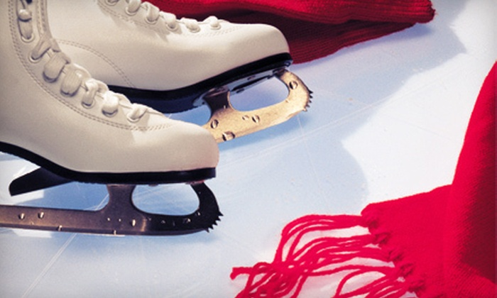 Polar Ice House - Grapevine Mills: $12 for Ice Skating with Skate Rentals for Two at Polar Ice House (Up to $24 Value)